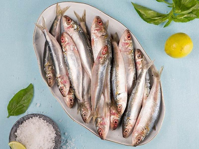 Sardine Fish Whole