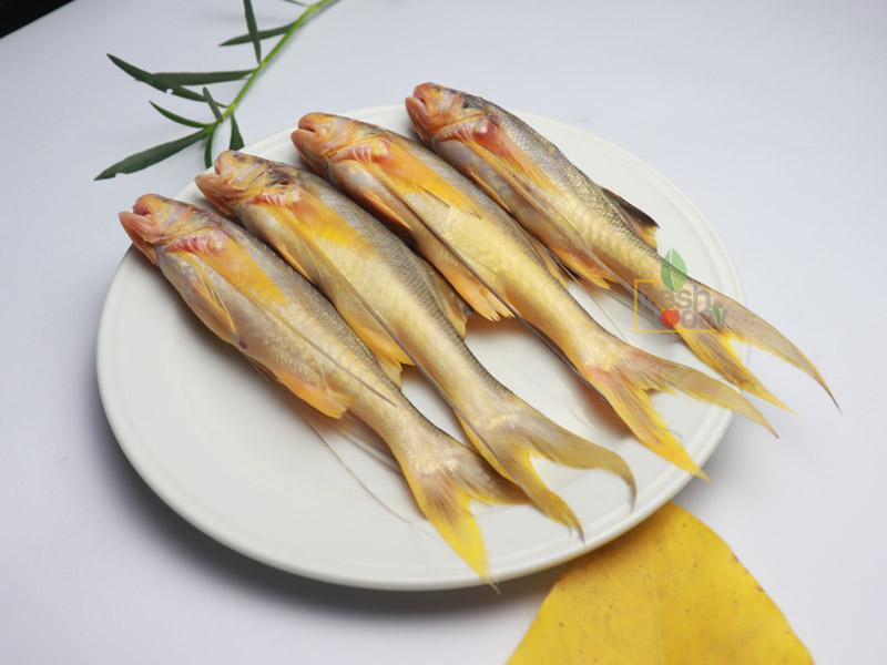 River Topshe Fish
