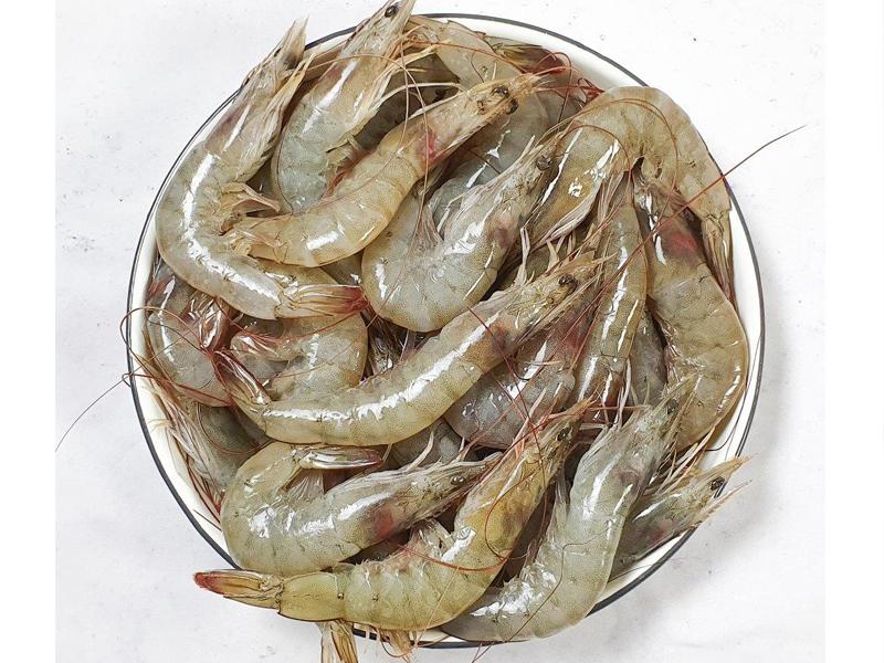 Horina shrimp Whole