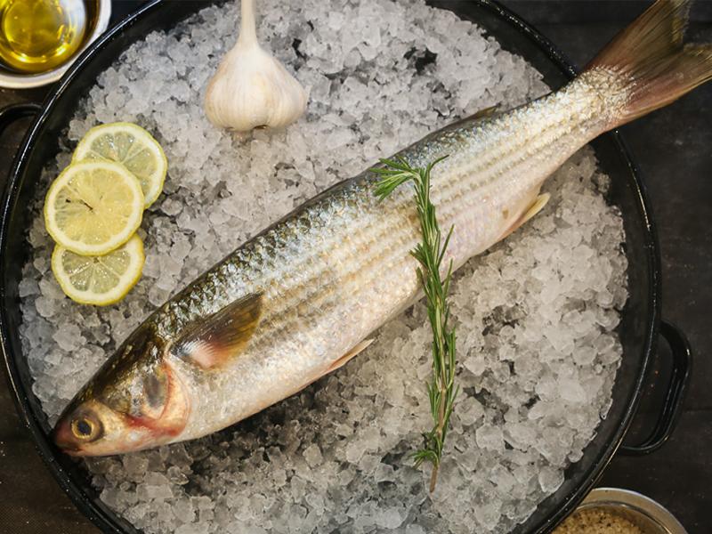 River Bata Fish Whole